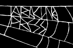 arachne logo white on black bus card sax2