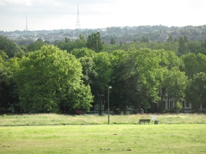 Hilly Fields on a quiet day