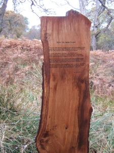 brians-poem-on-a-tree